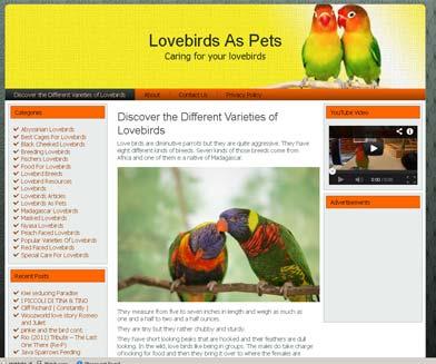 Lovebirds WordPress Theme